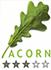 acorn-logo-1